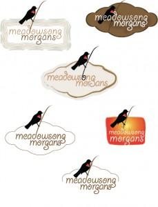 Meadowsong Morgans logo